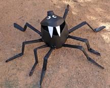 milk-jug-spider